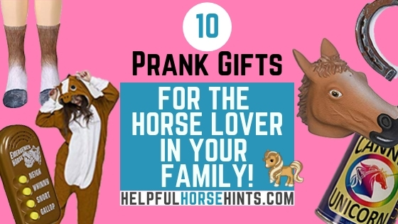 10 prank gift for the equestrian