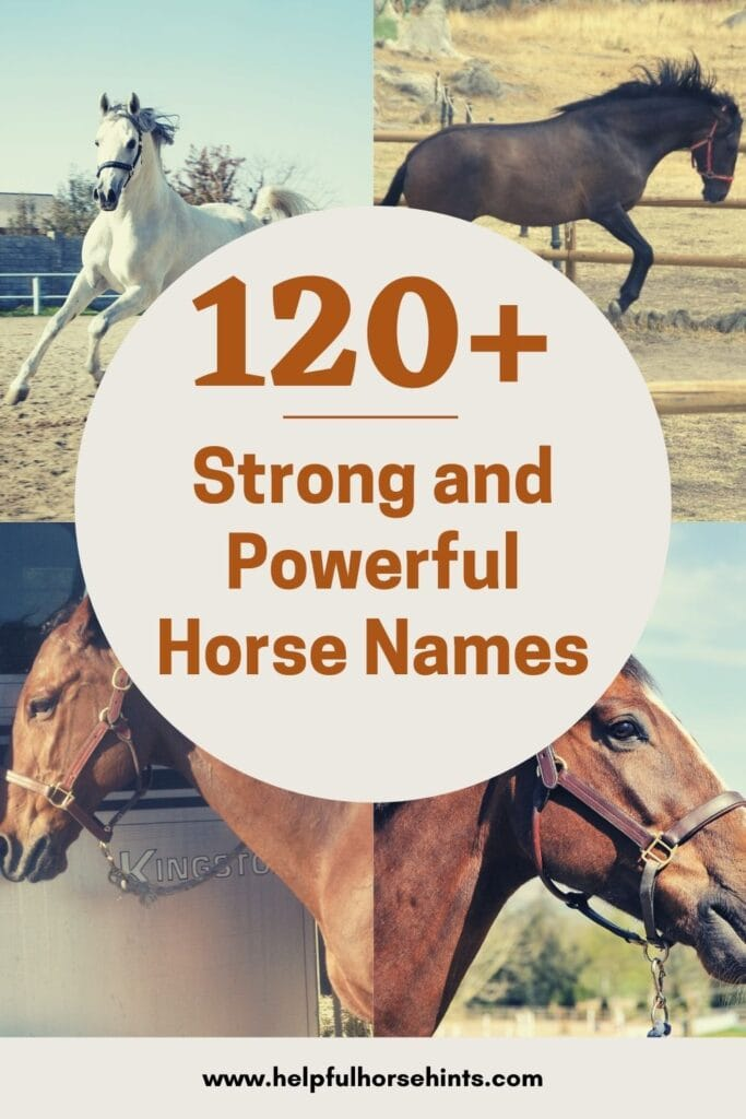 Pinterest pin - 120+ Strong and Powerful Horse Names