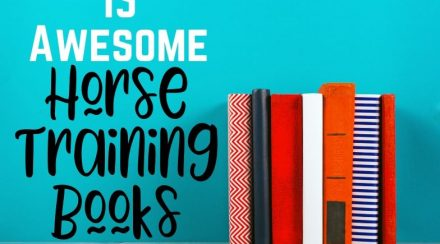15 Horse Training Books Every Equestrian Should Read
