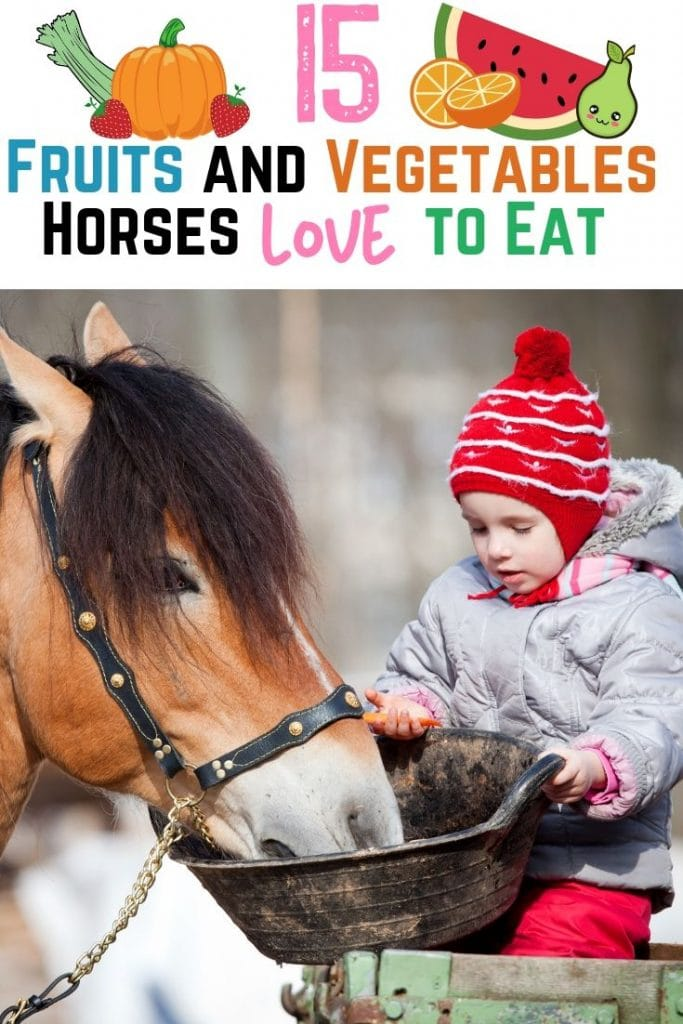 Pinterest pin - 15 Fruits and Vegetables Horses Love to Eat