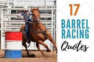 17 Remarkable Barrel Racing Quotes with Shareable Pictures