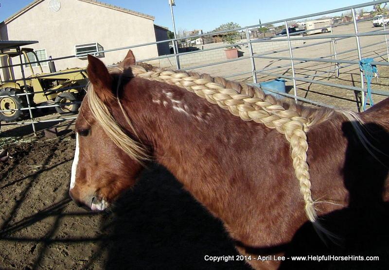 waterfall horse braid at helpfulhorsehints.com