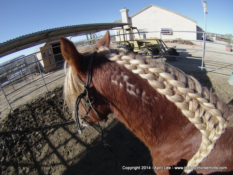 waterfall horse braid at helpfulhorsehints.com
