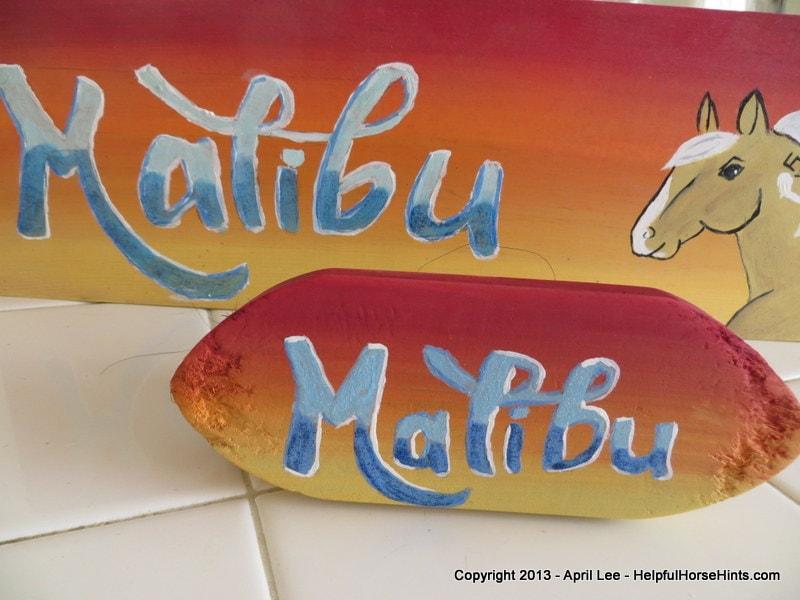 custom horse stall sign with matching custom horse grooming brush