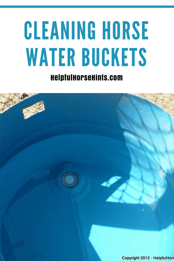 Pinterest pin - Cleaning Horse Water Buckets