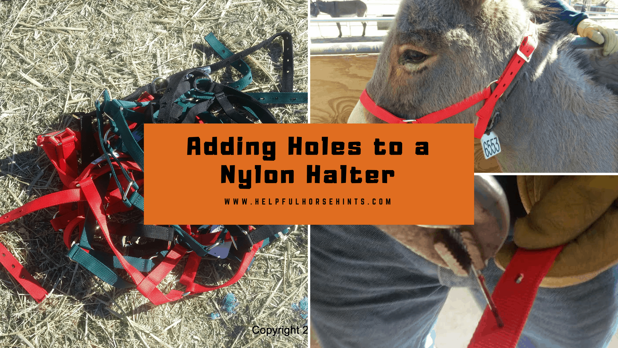 Adding Holes to a Nylon Halter