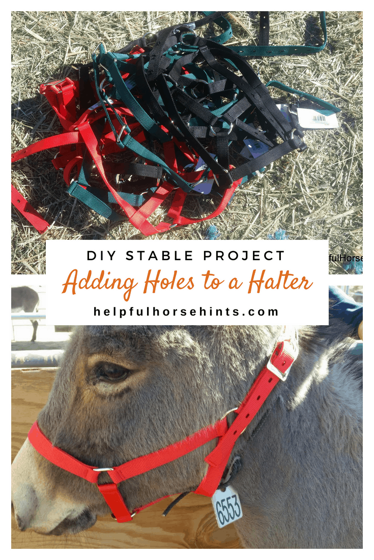 DIY Stable Project - Adding Holes to a Halter