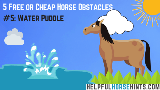 Horse Obstacle - Water Puddle