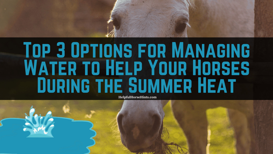 Top 3 Options for Managing Water to Help Your Horses During the Summer Heat Square