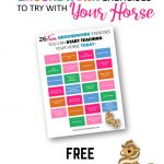 26 Fun Groundwork Exercises to Try With Your Horse