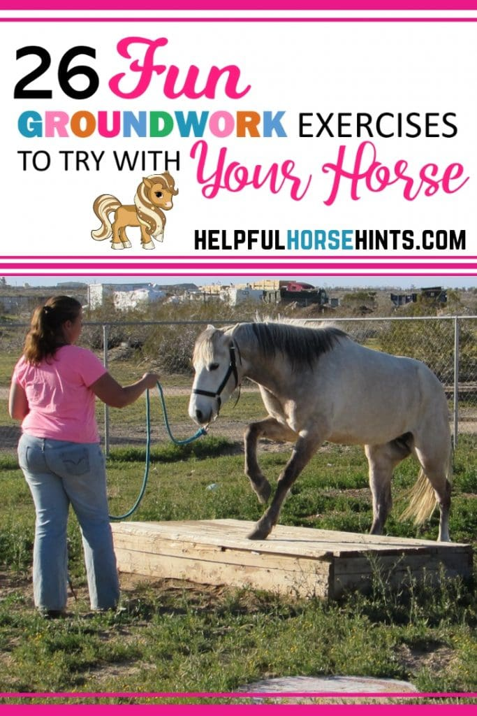 Pinterest pin - 26 Fun Horse Groundwork Exercises To Try