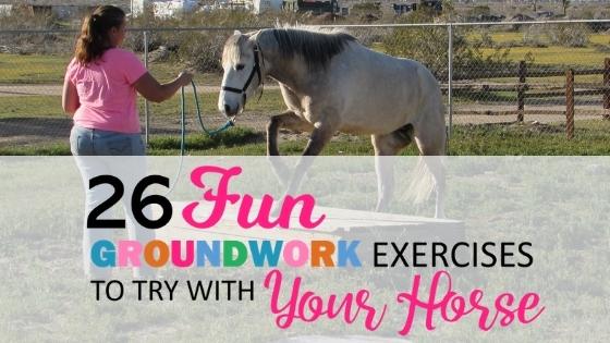 26 Fun Horse Groundwork Exercises
