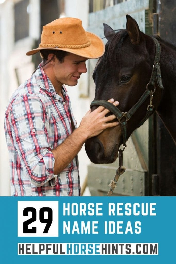 Pinterest pin - 29 Awesome Horse Rescue Name Ideas