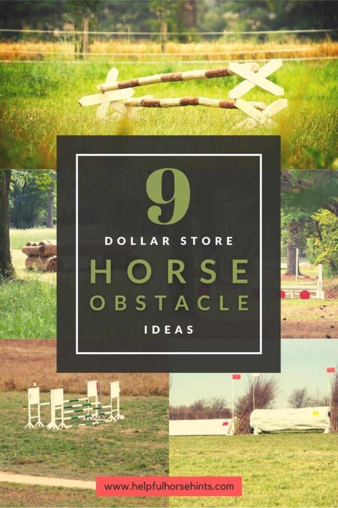 Pinterest pin - 9 Dollar Store Horse Obstacle Ideas