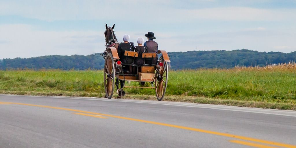 Amish buggy going down the road