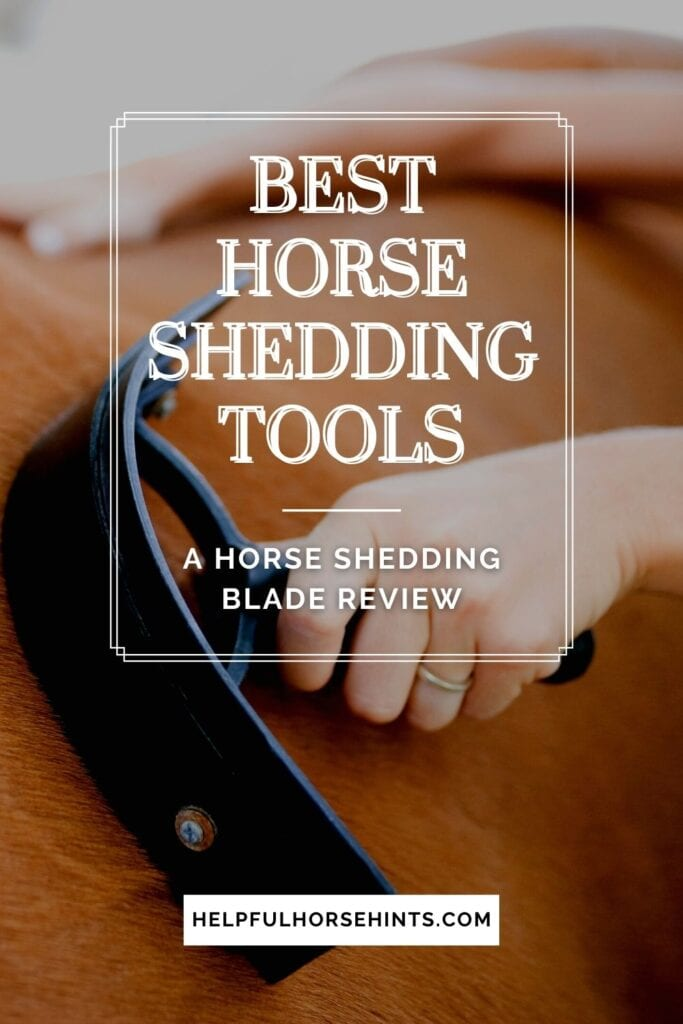 Pinterest pin - Best Horse Shedding Tools_ A Horse Shedding Blade Review