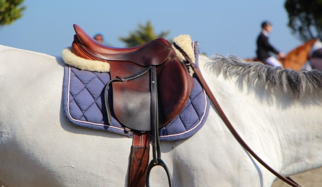 Contoured Saddle Pads