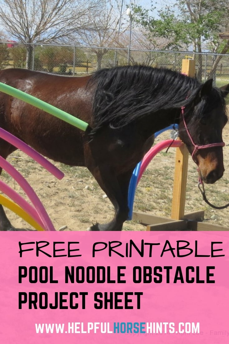 DIY Pool Noodle Obstacle