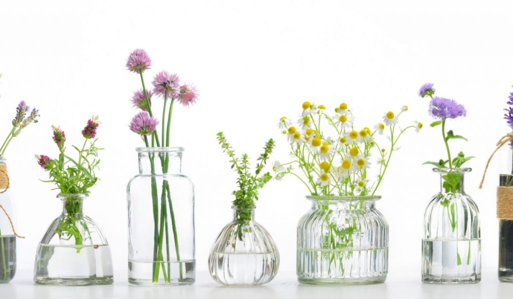 Graphical representation of essential oils