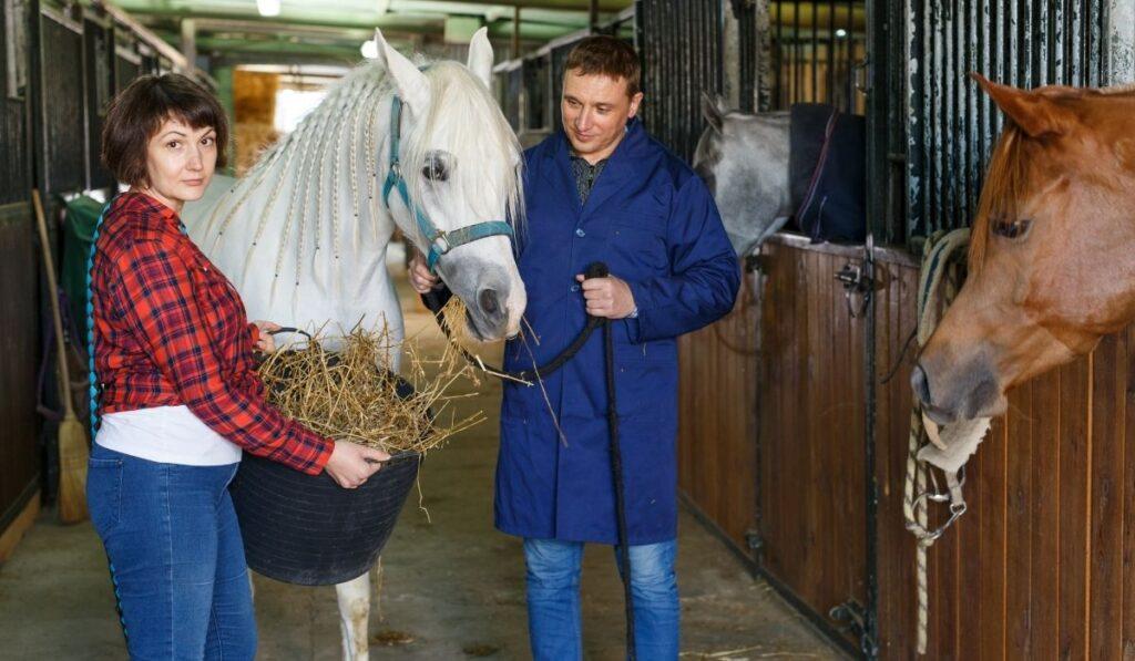 Feeding horse separately