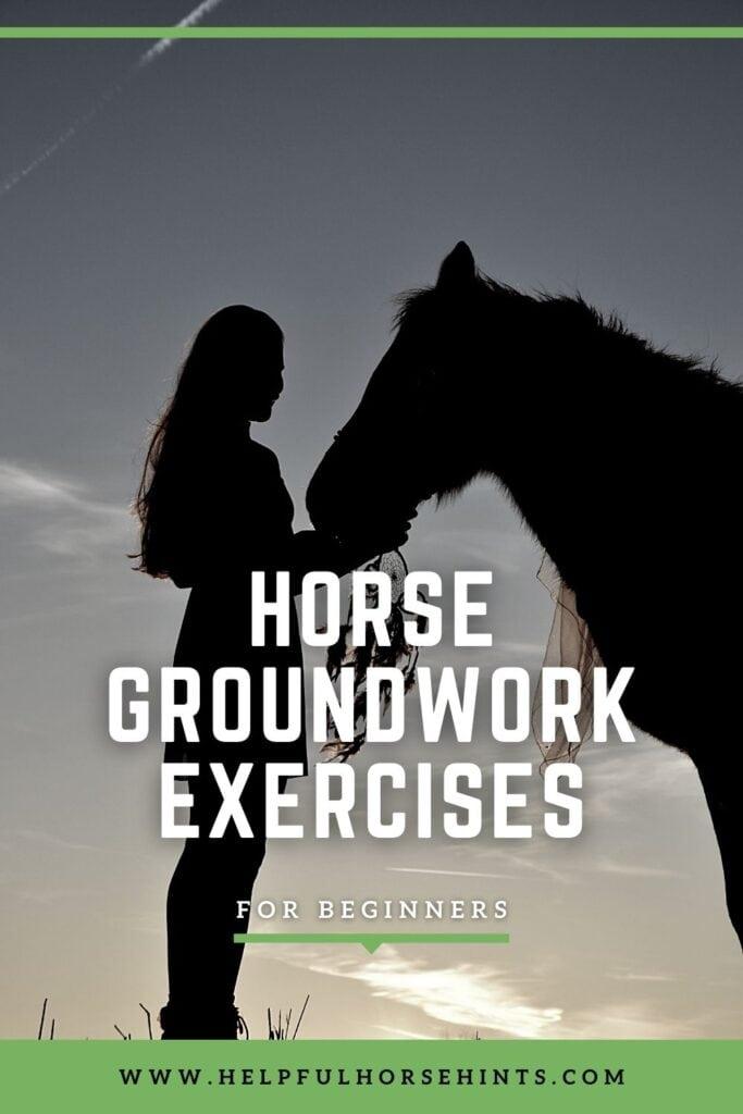 Pinterest pin - Horse Groundwork Exercises for Beginners