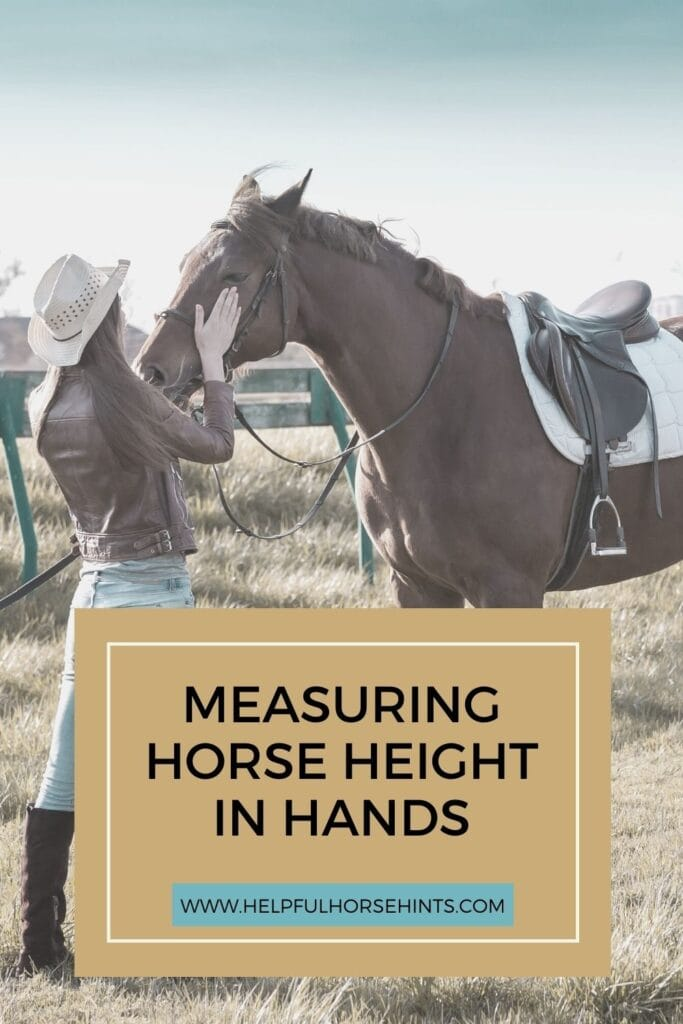 Pinterest pin - Horse Height Measurement in Hands