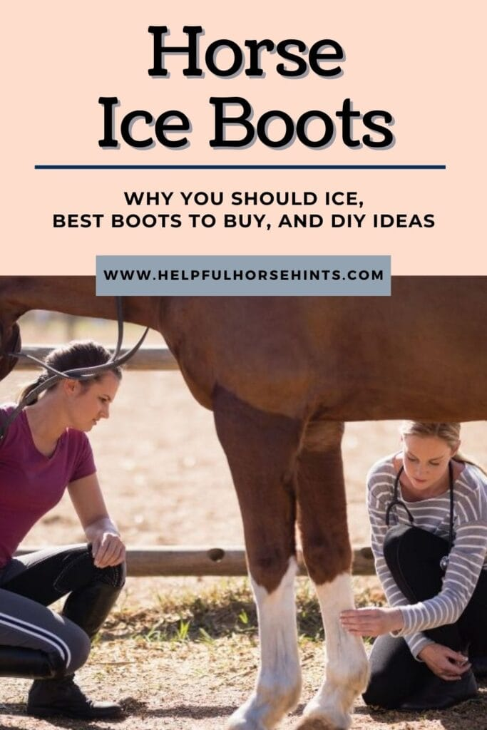 Pinterest pin - Horse Ice Boots - Why You Should Ice, Best Boots to Buy and Ideas to DIY