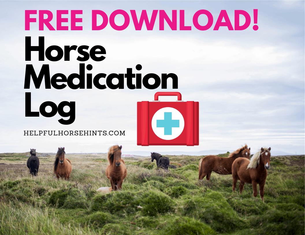 Free Download - Horse Medication Log Cover