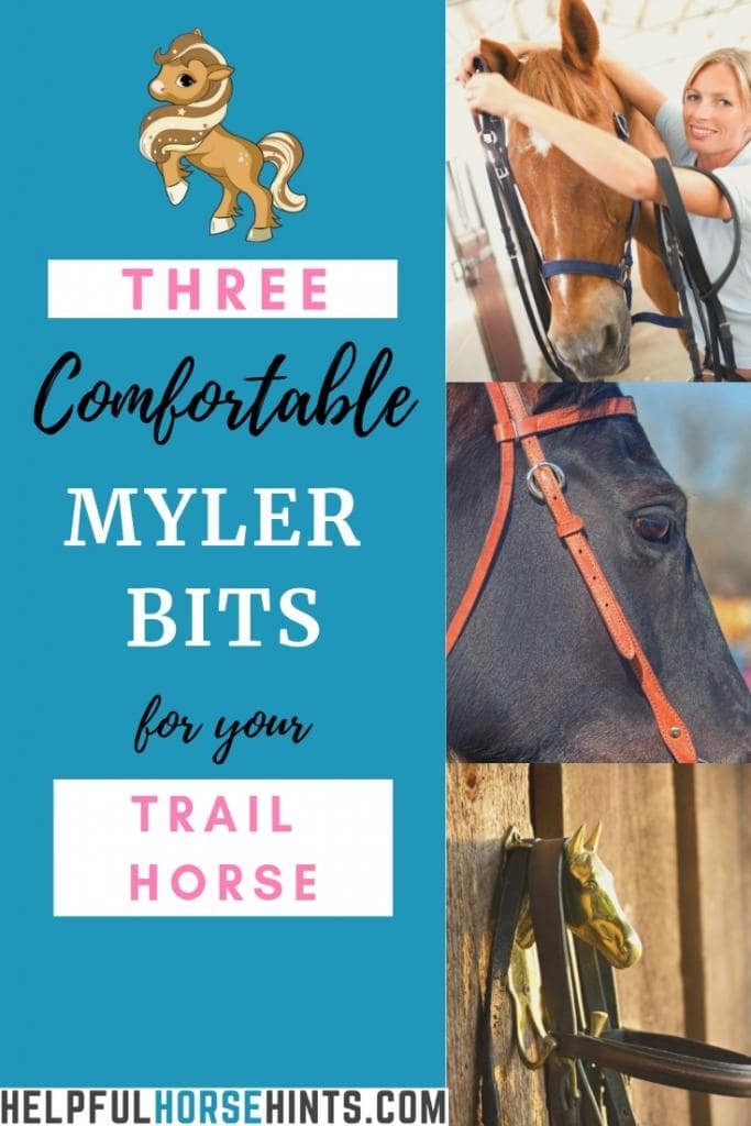myler bits for trail horses