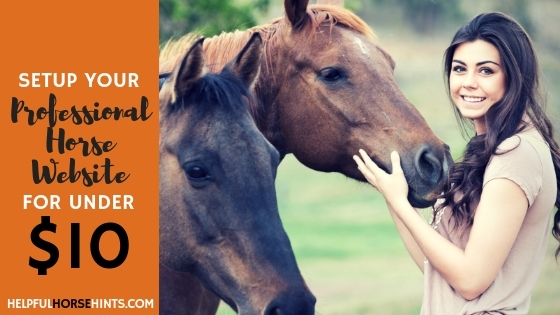 Professional Horse Website Under 10 Dollars