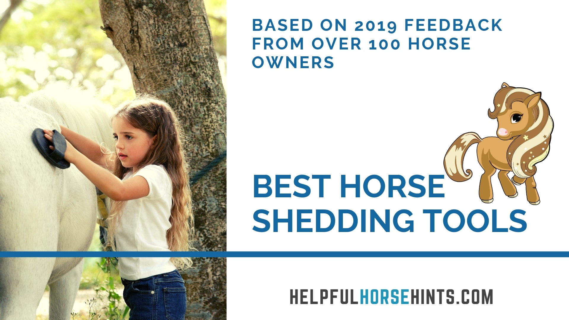 THE best horse shedding tools