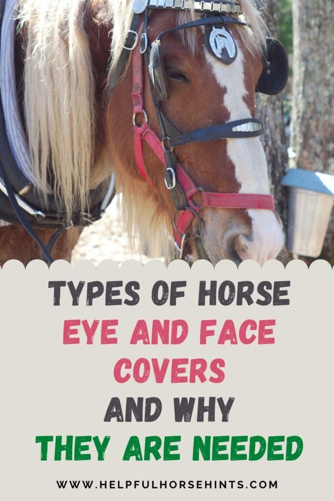 Pinterest pin - Types of Horse Eye and Face Covers