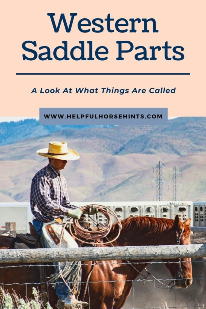 Pinterest pin - Western Saddle Parts: A Look At What Things Are Called