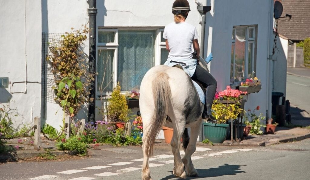 Woman riding horse in urban areas