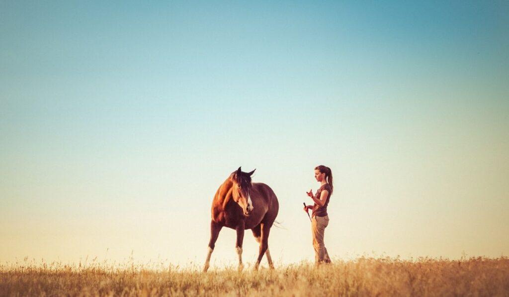 Woman training horse