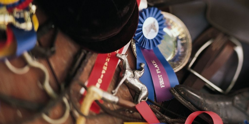 assorted schooling show ribbons, tack and attire
