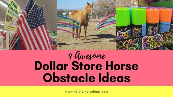 9 Awesome Dollar Store Horse Obstacle Ideas