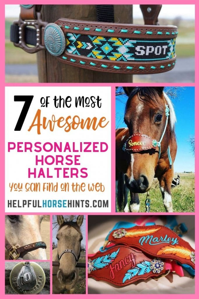 personalized horse halters