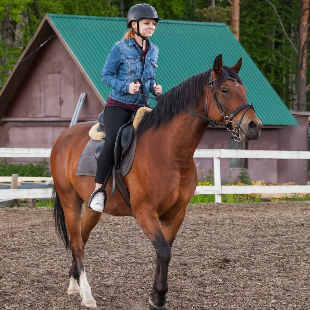 19 Beginner Horse Riding Exercises To Shake Up Your Routine Helpful Horse Hints