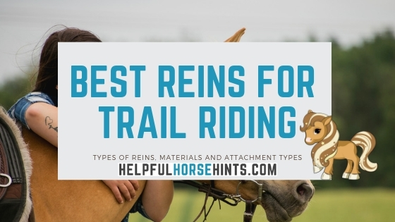 best reins for trail riding