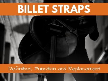 Billet Straps: Definition, Function and Replacement