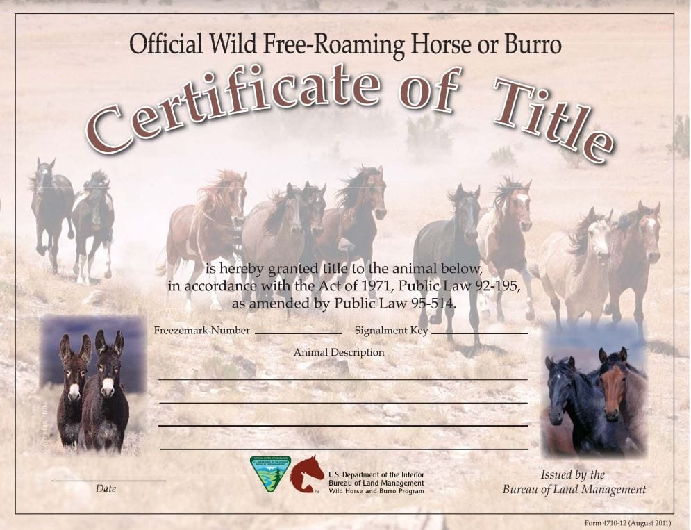 Sample BLM Certificate of Title