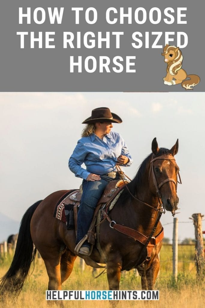 Pinterest pin - horse and rider