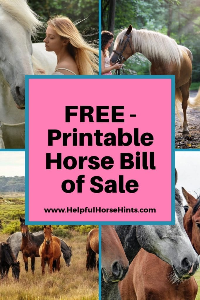 free printable sale form for horses