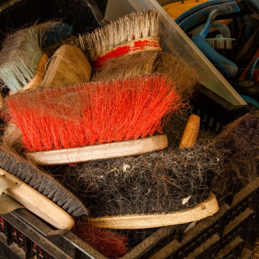 dirty horse brushes