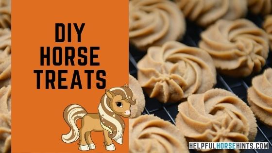 diy horse treats