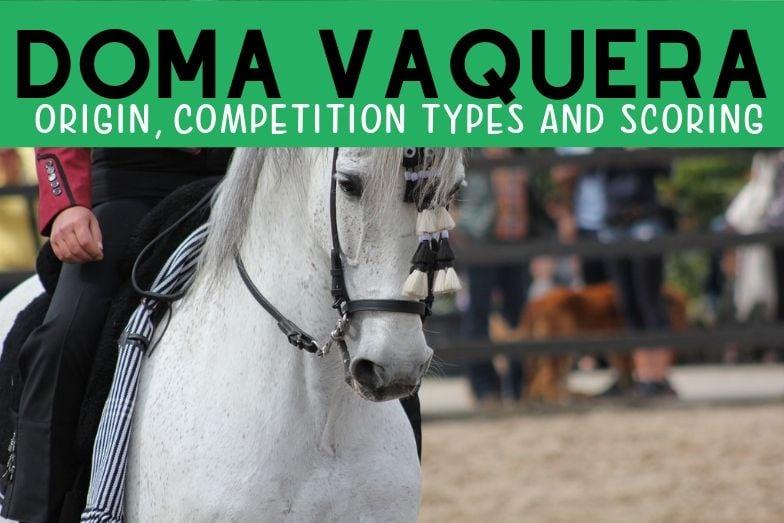 Doma Vaquera: Origin, Competition Types and Scoring