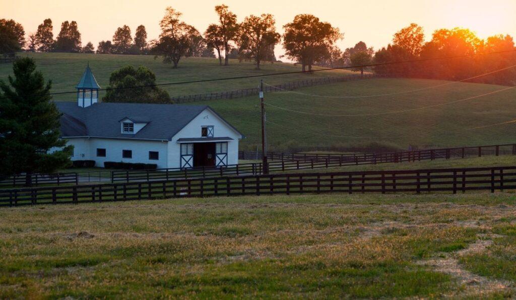 empty horse farm