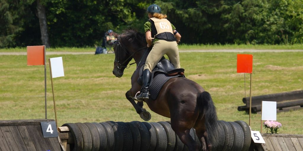 Eventing Levels Explained – The Equestrian Triathlon