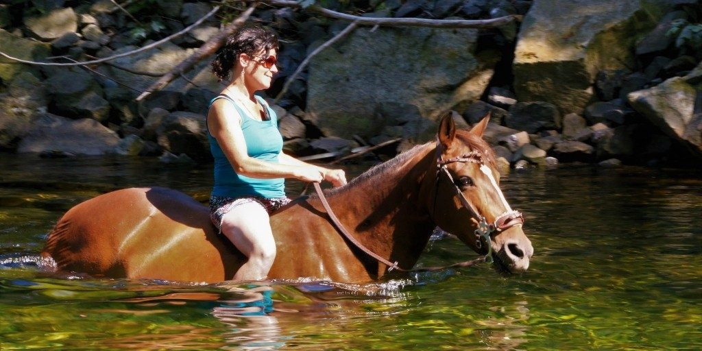 woman swimming with her horse while riding bareback